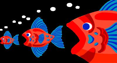 Big-fish-eating-fish1